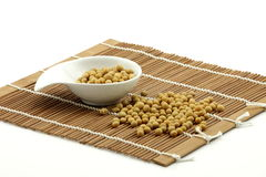 Soybean (glycine max) Stock Image