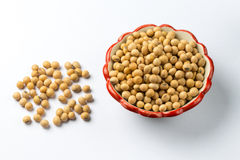 Soybean.  Royalty Free Stock Photography