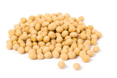 Soybean stock photos
