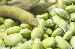 Soybean. In background for cooking Stock Photography