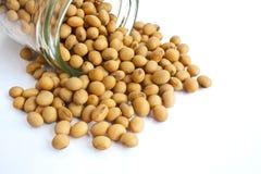 Soybean in bottle Stock Photo