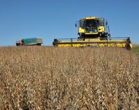 Soybean crop harvesting stock photos