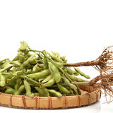 Soybean (edamame) Royalty Free Stock Image