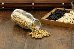 Soybean (glycine max) Stock Photos