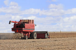 Soybean Harvest Royalty Free Stock Image