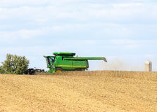 Soybean Harvest Stock Image