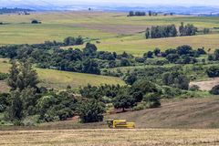 Free Soybean Harvesting Stock Photo - 121522730