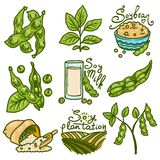 Soybean icons set, hand drawn style stock illustration