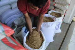 Soybean. Imports in the market of traditional Ampel, boyolali, Central Java, Indonesia Royalty Free Stock Photography