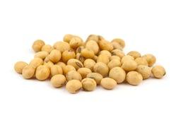 Soybean isolated Stock Photo