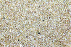 Soybean Meal Background Royalty Free Stock Photos