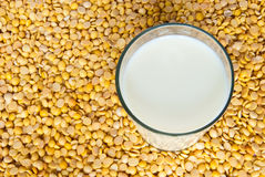 Soybean milk Royalty Free Stock Photo