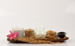 Soybean milk, soy, Black Sesame Seeds and Germinated brown rice (GABA). Royalty Free Stock Photography