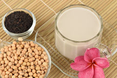 Soybean milk, soy, Black Sesame Seeds and Germinated brown rice (GABA). Royalty Free Stock Photos