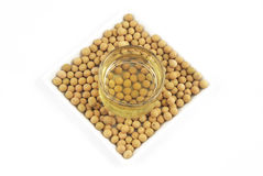 Soybean oil from soy bean Royalty Free Stock Photography