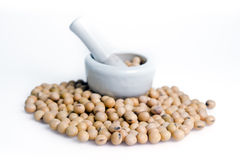 Soybean or soy bean isolated on white background Royalty Free Stock Images
