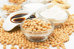 Soybean and soy products. Used in asian an vegetarian cuisine Royalty Free Stock Photos