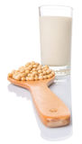 Soybean And Soybean Milk X Stock Photo