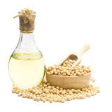 Soybean and Soybean oil bottle isolated on white background.  stock photo