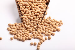 Soybean Stock Photos
