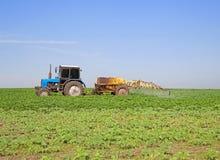 Soybean spraying royalty free stock photo