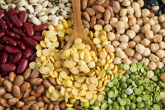 Soybean top view Stock Images