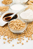Soybean and various soy products. On white background, not isolated Stock Photography