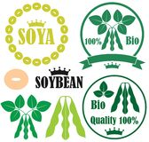 Soybean. Vector illustration (EPS 10 Royalty Free Stock Image