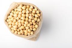 Soybean Royalty Free Stock Photos