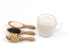 Soybean, White sesame, black sesame seeds. and soya health drink. Royalty Free Stock Photo
