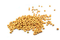 Soybean Royalty Free Stock Photos