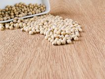 Soybeans Royalty Free Stock Images