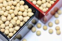 soybeans Fotografering för Bildbyråer