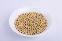 soybeans imagens de stock