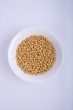 soybeans imagem de stock