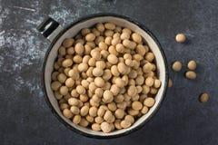 soybeans Arkivbild