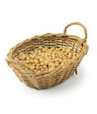 Soybeans in basket Royalty Free Stock Photo