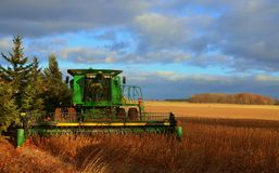 Soybeans being harvested Stock Photography