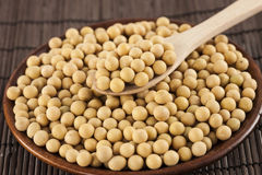 Soybeans in a bowl Stock Photography