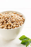 Soybeans. Organic soy beans in cup Stock Images