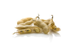 Soybeans in shells isolated Stock Images