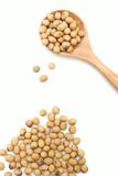 Soybeans. Soya beans is in wooden blow Royalty Free Stock Photo