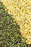 Soybeans, split in half and Mung beans Royalty Free Stock Photography