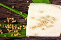 Soybeans and tofu Stock Photos