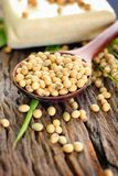 Soybeans and tofu Stock Photo