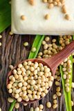 Soybeans and tofu Royalty Free Stock Photos