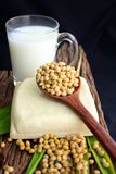 Soybeans and tofu Stock Photography