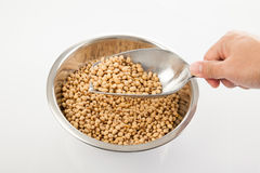 Soybeans with  transfer scoop and bowl Royalty Free Stock Photography