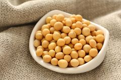 Soybeans in white ceramic bowl on sackcloth background Royalty Free Stock Image