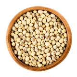 Soybeans in wooden bowl on white background Royalty Free Stock Images